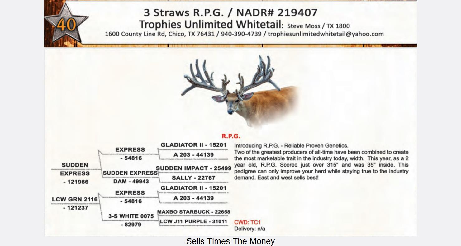 Lot 40 - Deer Breeders Corporation - Whitetail Deer Auction