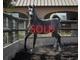 Magda aljassimya sold 1729abbb58fa08bd4f1d487df623a093